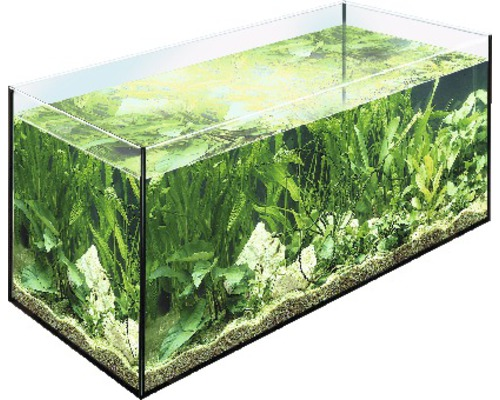 aquarium eheim 100 x 40 x 50 cm 200 liter jetzt kaufen bei hornbach sterreich. Black Bedroom Furniture Sets. Home Design Ideas