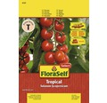 Tomatensamen FloraSelf Select Cherrytomate 'Tropical F1'
