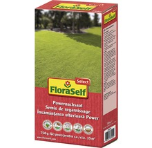 Rasensamen FloraSelf Powernachsaat Select 750 g / 30 m²