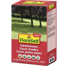 Rasensamen FloraSelf Select Schattenrasen 1,2 kg / 50m²